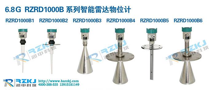 RZRD1000B雷达物位计