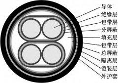 用于控制电磁流量计使用中低噪音的信号电缆结构设计说明